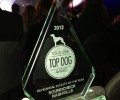 Soundcheck wins Top Dog Award